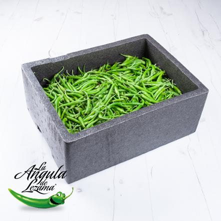 Piparra fresca de temporada presentada en su caja de transporte